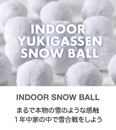 インドア雪合戦スノーボール