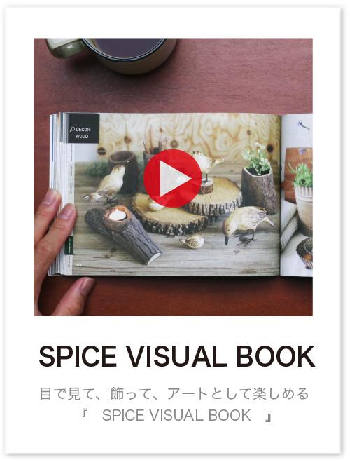 ビジュアルブック