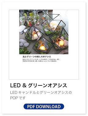 LEDグリーンオアシス